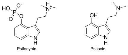 psilocybin-psilocin-structure